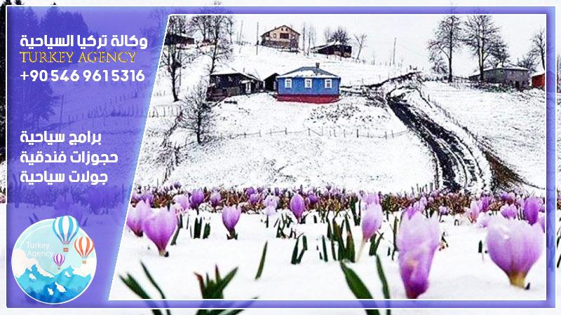 برنامج طرابزون في الشتاء